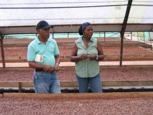 staff-trip-Dominican-Republic-CONACADO_2007_Dary-Goodrich-3347_720x540_72_RGB